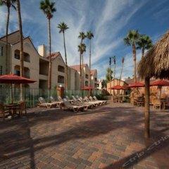 Отель Holiday Inn Club Vacations: Las Vegas at Desert Club Resort фото 4