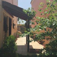 Отель Ulrika Греция, Эгина - отзывы, цены и фото номеров - забронировать отель Ulrika онлайн фото 4