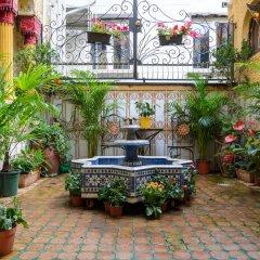 Отель Mozart Бельгия, Брюссель - 4 отзыва об отеле, цены и фото номеров - забронировать отель Mozart онлайн фото 5