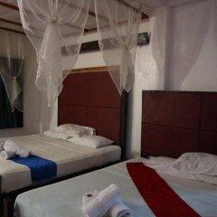 Отель The Lotus Garden Hotel Филиппины, Пуэрто-Принцеса - отзывы, цены и фото номеров - забронировать отель The Lotus Garden Hotel онлайн комната для гостей фото 2