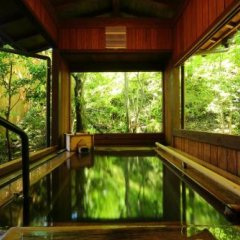 Отель Oyado Nonohana Минамиогуни бассейн фото 3