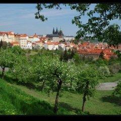 Отель Kaprova Чехия, Прага - отзывы, цены и фото номеров - забронировать отель Kaprova онлайн