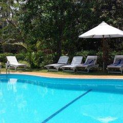 Отель Dalmanuta Gardens Шри-Ланка, Бентота - отзывы, цены и фото номеров - забронировать отель Dalmanuta Gardens онлайн бассейн
