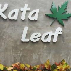 Отель Kata Leaf Resort городской автобус