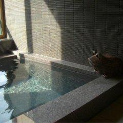 Отель Higashi Wakata Хакуба бассейн фото 2