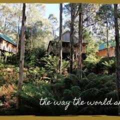 Отель Lemonthyme Wilderness Retreat фото 7