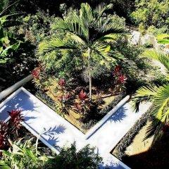 Отель Retreat Guest House Ямайка, Дискавери-Бей - отзывы, цены и фото номеров - забронировать отель Retreat Guest House онлайн фото 4