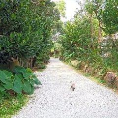 Отель Kariyushi Condominium Resort Onna Maeda Base Центр Окинавы фото 11