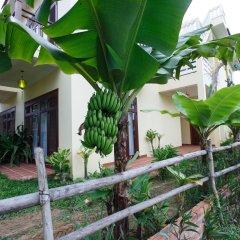 Отель Lama Homestay Hoi An фото 3