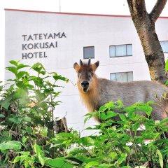 Tateyama Kokusai Hotel Тояма парковка