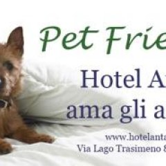 Hotel Antagos с домашними животными