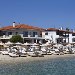 Отель Adriana Studios Греция, Пефкохори - отзывы, цены и фото номеров - забронировать отель Adriana Studios онлайн фото 5