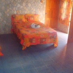 Cotton Tree Hotel удобства в номере