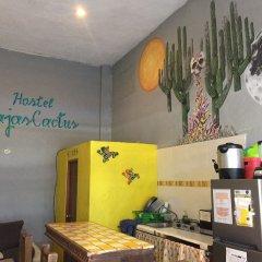 Baja's Cactus Hostel Кабо-Сан-Лукас питание