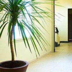 Отель Mauritania Centre Tanger Марокко, Танжер - отзывы, цены и фото номеров - забронировать отель Mauritania Centre Tanger онлайн ванная фото 2