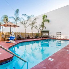 Отель Comfort Inn Near the Sunset Strip США, Лос-Анджелес - отзывы, цены и фото номеров - забронировать отель Comfort Inn Near the Sunset Strip онлайн бассейн