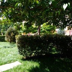 Отель Kamelia Garden Солнечный берег фото 20