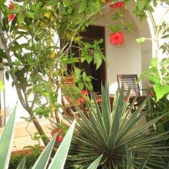 Отель The Tandem Guesthouse Шри-Ланка, Хиккадува - отзывы, цены и фото номеров - забронировать отель The Tandem Guesthouse онлайн фото 4