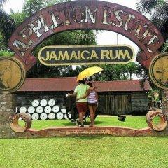 Отель Retreat Comfortable Apartments Ямайка, Фалмут - отзывы, цены и фото номеров - забронировать отель Retreat Comfortable Apartments онлайн детские мероприятия