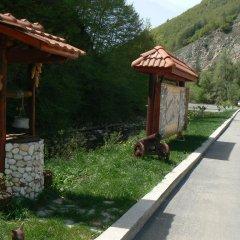 Отель Fisherman's Hut Family Hotel Болгария, Чепеларе - отзывы, цены и фото номеров - забронировать отель Fisherman's Hut Family Hotel онлайн фото 13