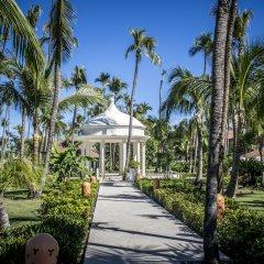 Отель Majestic Colonial Club - Junior Suite Доминикана, Пунта Кана - отзывы, цены и фото номеров - забронировать отель Majestic Colonial Club - Junior Suite онлайн фото 2