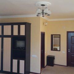 Отель Vanadzor Armenia Health Resort Дзорагет удобства в номере