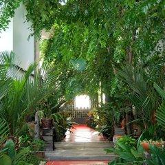 Отель Papa Monkey Resort фото 8