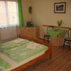 Отель Chebsky dvur - Egerlander Hof комната для гостей фото 2