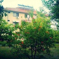 Отель Viktoria Албания, Тирана - отзывы, цены и фото номеров - забронировать отель Viktoria онлайн фото 5
