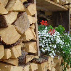Hotel Savoia In San Martino Di Castrozza Italy From 205 Photos Reviews Zenhotels Com