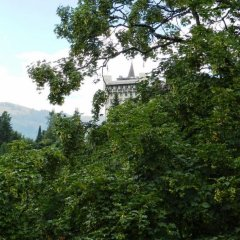 Отель Tree-Tops, Chalet фото 6