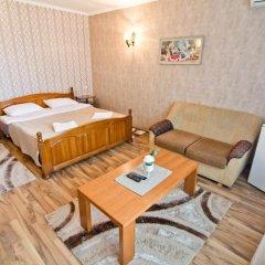 Отель Family Hotel Victoria Gold Болгария, Димитровград - отзывы, цены и фото номеров - забронировать отель Family Hotel Victoria Gold онлайн комната для гостей фото 2