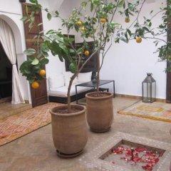 Отель Riad Azza Марокко, Марракеш - отзывы, цены и фото номеров - забронировать отель Riad Azza онлайн фото 6