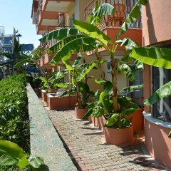 Yavuzhan Hotel Турция, Сиде - 1 отзыв об отеле, цены и фото номеров - забронировать отель Yavuzhan Hotel онлайн фото 3