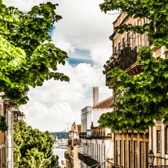 Отель Casinha Das Flores Лиссабон фото 7