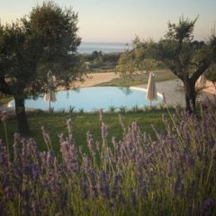 Отель Pamperduto Country Resort Потенца-Пичена приотельная территория