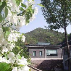 Отель Beijing Badaling Qinglongquan Leisure Resort Китай, Пекин - отзывы, цены и фото номеров - забронировать отель Beijing Badaling Qinglongquan Leisure Resort онлайн фото 4