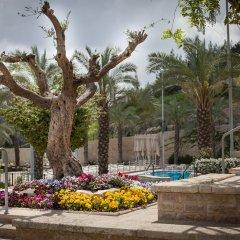 Yehuda Израиль, Иерусалим - отзывы, цены и фото номеров - забронировать отель Yehuda онлайн с домашними животными