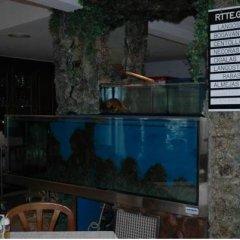 Отель Hostal Gabino Испания, Арнуэро - отзывы, цены и фото номеров - забронировать отель Hostal Gabino онлайн интерьер отеля