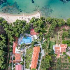 Отель Porfi Beach Hotel Греция, Ситония - 1 отзыв об отеле, цены и фото номеров - забронировать отель Porfi Beach Hotel онлайн пляж