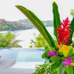 Отель Bungalows La Madera Мексика, Сиуатанехо - отзывы, цены и фото номеров - забронировать отель Bungalows La Madera онлайн бассейн фото 3