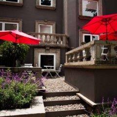 Отель Pug Seal B&B Coyoacan Мексика, Мехико - отзывы, цены и фото номеров - забронировать отель Pug Seal B&B Coyoacan онлайн