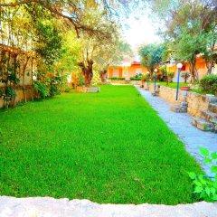 Отель Kripis House Греция, Пефкохори - отзывы, цены и фото номеров - забронировать отель Kripis House онлайн фото 15