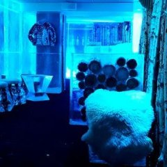 Kube Hotel Ice Bar фото 14