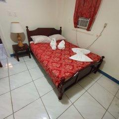 Отель Aracari Hotel Guyana Гайана, Джорджтаун - отзывы, цены и фото номеров - забронировать отель Aracari Hotel Guyana онлайн комната для гостей фото 4