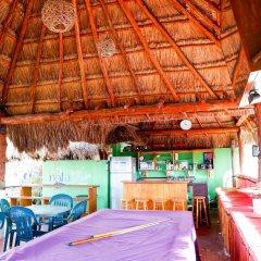 Отель Hostel Cancun Natura Мексика, Канкун - отзывы, цены и фото номеров - забронировать отель Hostel Cancun Natura онлайн гостиничный бар