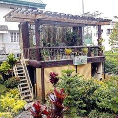Отель Ridgewood Hotel Филиппины, Багуйо - отзывы, цены и фото номеров - забронировать отель Ridgewood Hotel онлайн фото 7