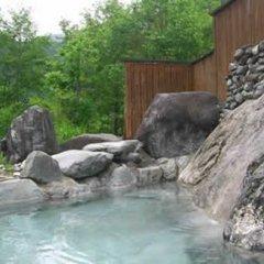 Отель Pension Hayaokidori Хакуба бассейн фото 2