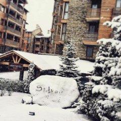 Апартаменты Saint Ivan Ski Apartments Банско фото 4
