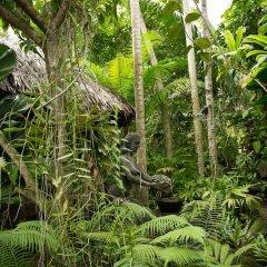Отель Rohotu Fare Французская Полинезия, Бора-Бора - отзывы, цены и фото номеров - забронировать отель Rohotu Fare онлайн приотельная территория фото 2